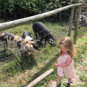 Venn Farm Pets